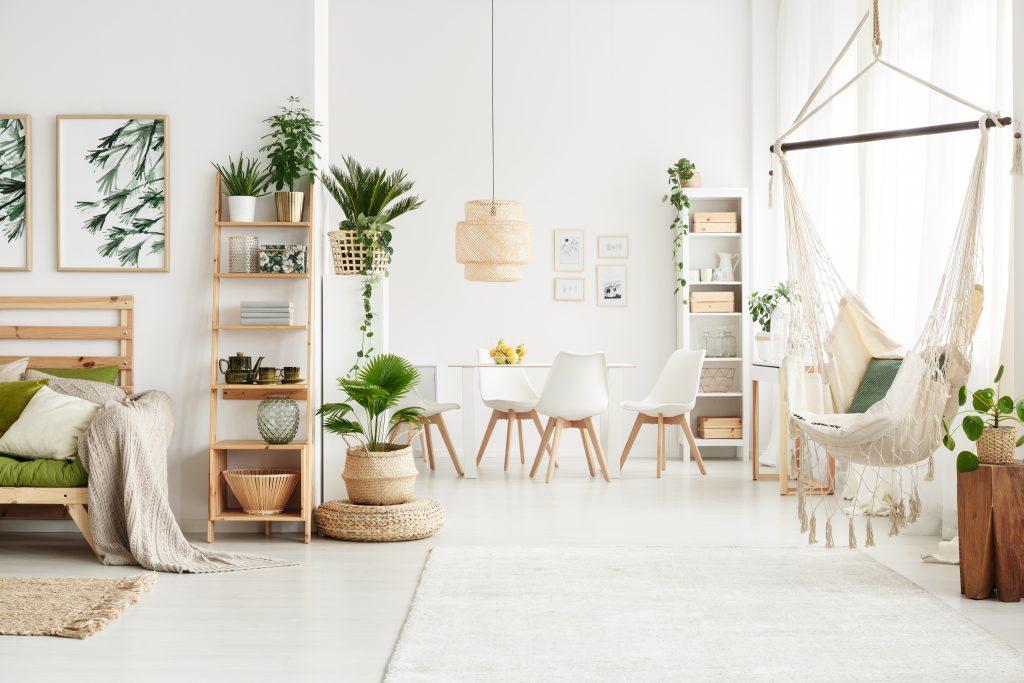 salon, hamac, plantes, lumière.