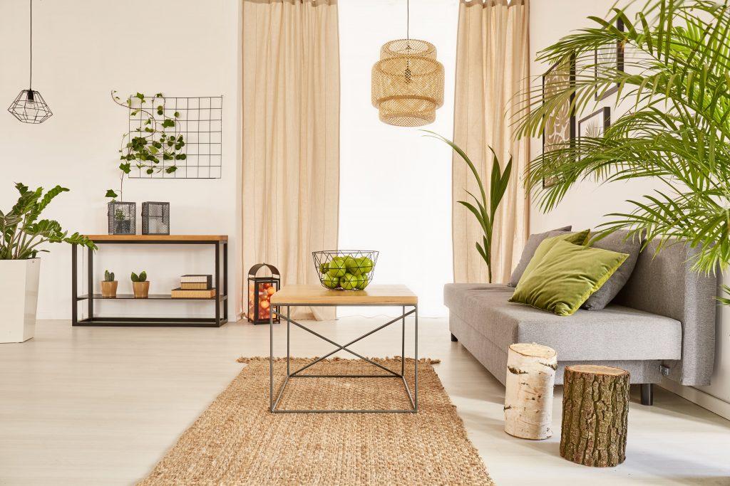 intérieur de maison salon naturel plante d'intérieur